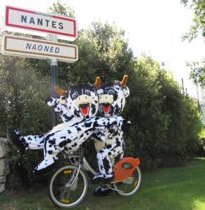 Nantes communication autour 1 an du bicloo avec L2vaches